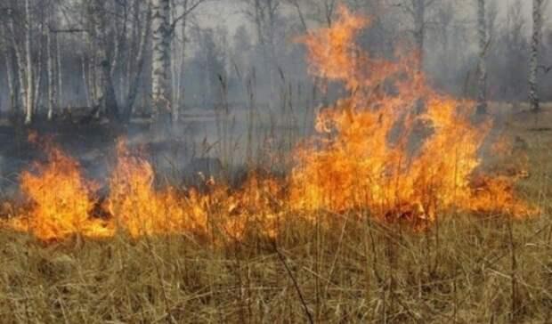 ВПервомайском районе Оренбургской области прогнозируют высокую пожарную опасность