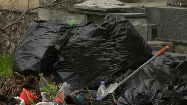 «Горы мусора»: Лесное кладбище во Владивостоке в эпицентре скандала