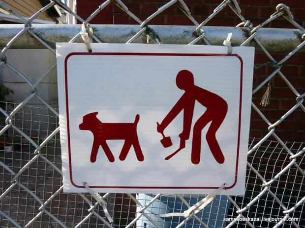 Чтобы закрыть вопрос про выгул собак. Читаем московский КоАП.