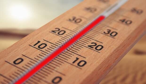 До +33 градусов ожидается в Удмуртии в пятницу
