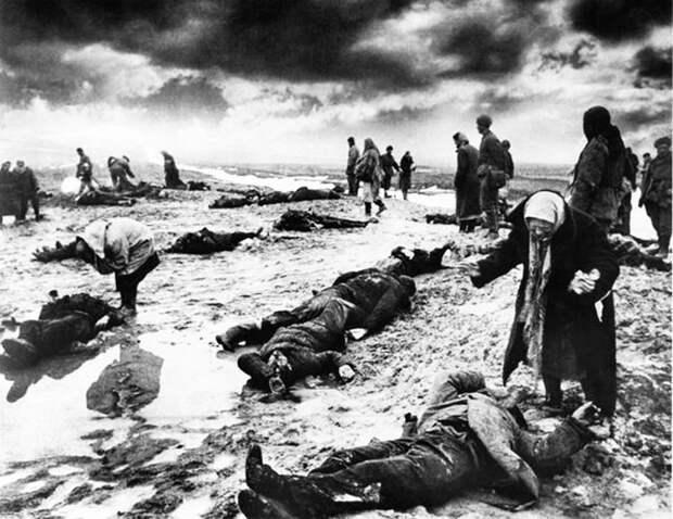 Правда о советских потерях в Великой Отечественной войне