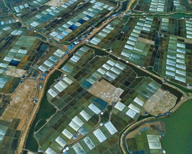 Снимки из путешествий Чан Туан Вьета, с интересом изучающего нашу планету