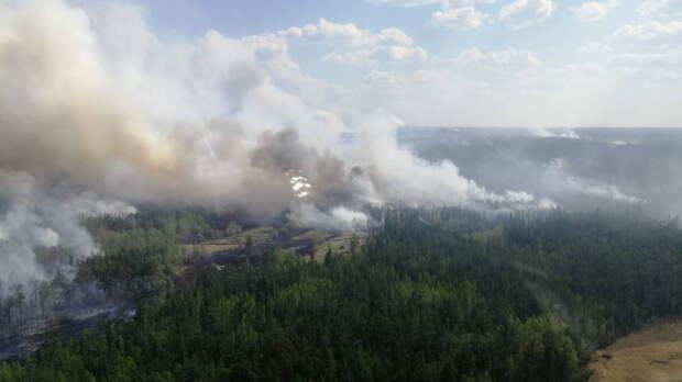 Лесные пожары в Греции заставили власти эвакуировать население