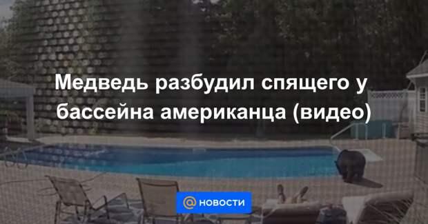 Медведь разбудил спящего у бассейна американца (видео)