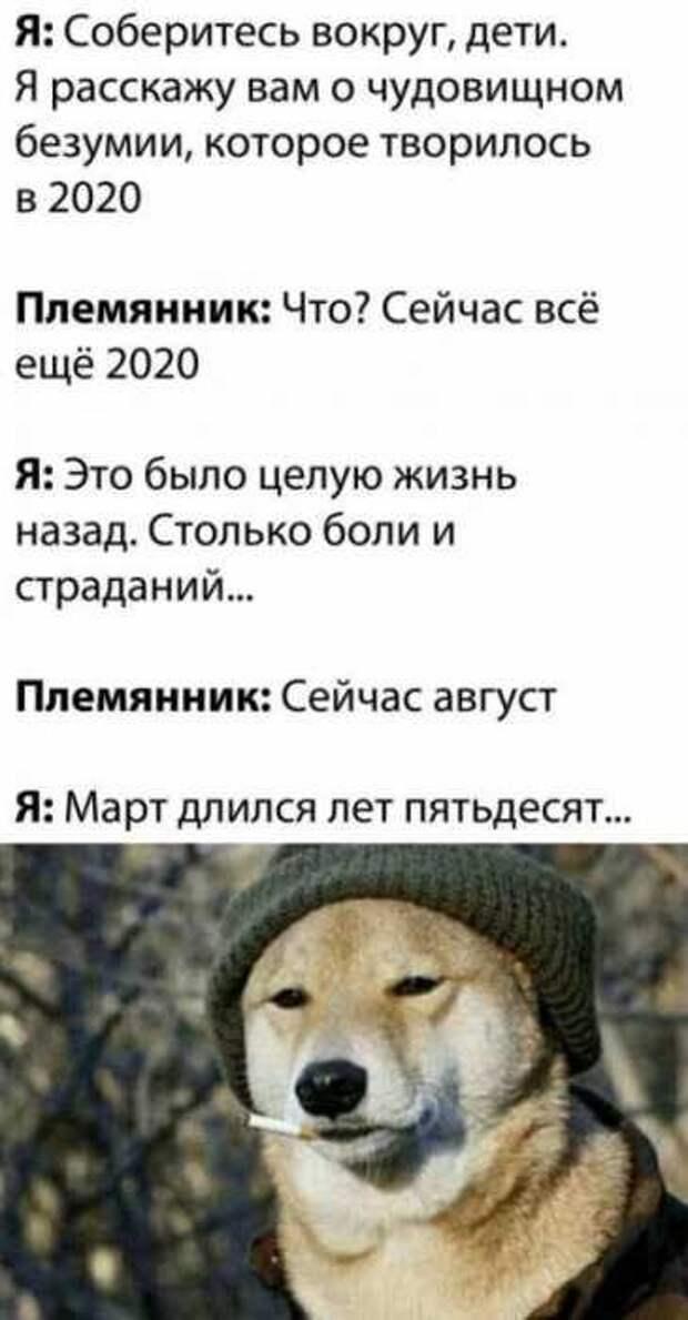 Приколы про 2020-й