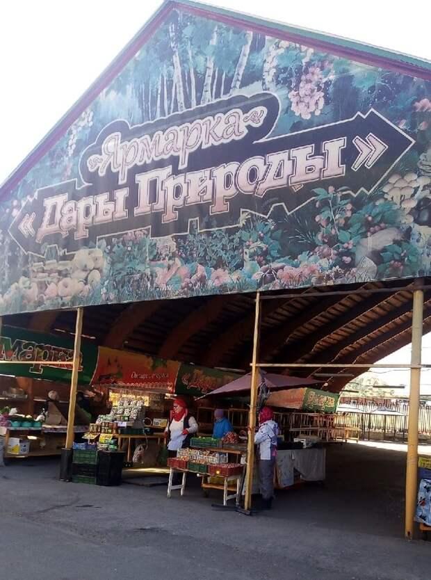 Захотелось картошки с грибами – поискали на рынке и в магазинах. Цены высокие и для здорового питания не подходят