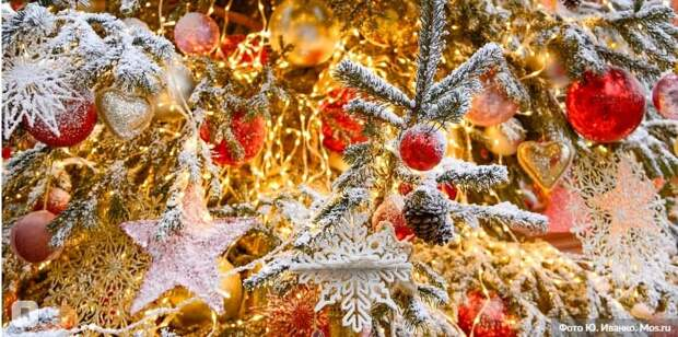В Москве назван победитель онлайн-конкурса «Лучший Дед Мороз».Фото: Ю.Иванко mos.ru