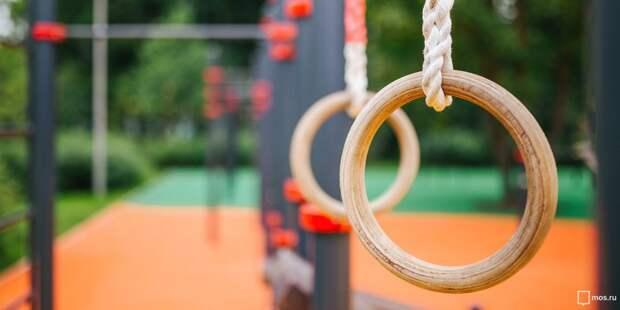 Вы часто занимаетесь спортом на площадке для воркаута в парке «Северное Тушино»? — новый опрос
