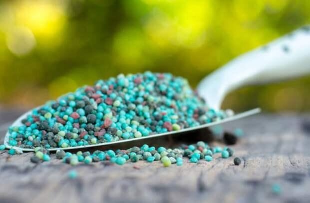 Какие виды минеральных удобрений бывают? Разбираем по полочкам