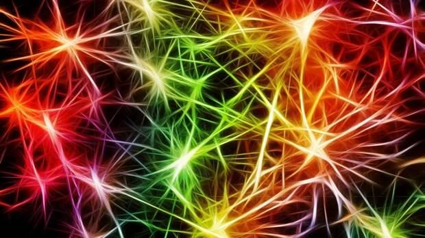 Американский нейробиолог выдвинул новую гипотезу о возникновении снов