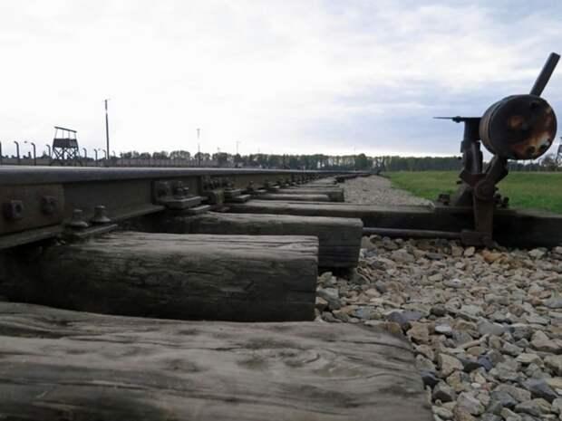 Растет число жертв столкновения поездов в Пакистане: в искореженных вагонах остаются люди
