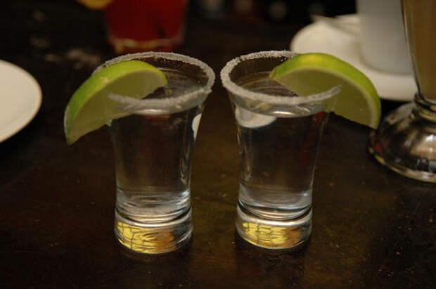 50 фактов о том, что алкоголь полезен не только вреден, но и полезен