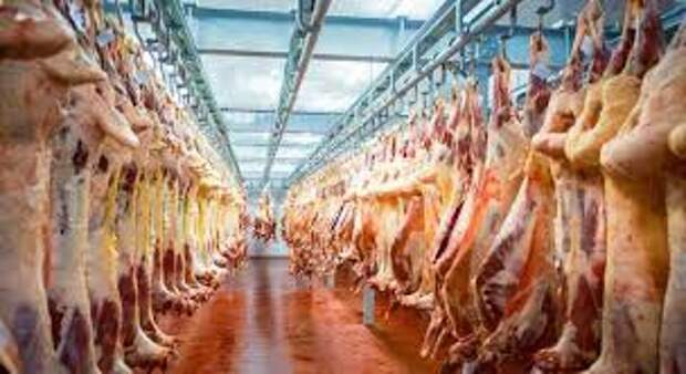Аргентина планирует намесяц заморозить экспорт мяса