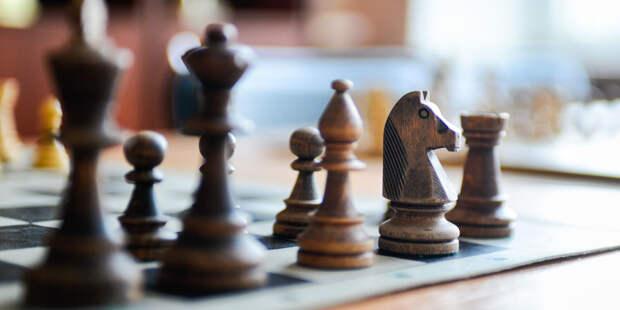 Сюрреалистические инсталляции, роспись пряников и шахматы: развлечения для детей на неделе