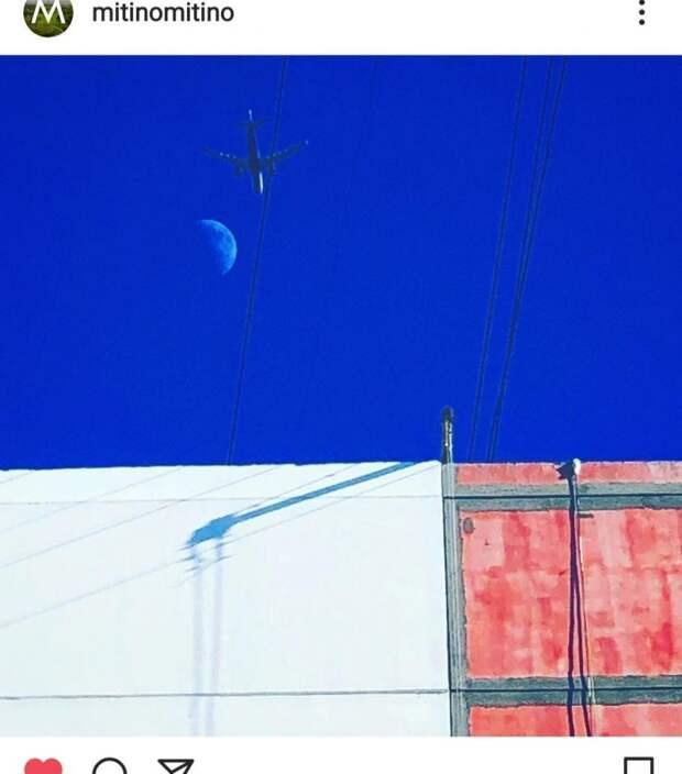 Фото дня: неопластицизм в Митине