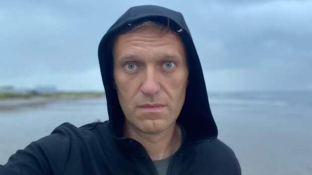 """Партия """"Яблоко"""" пытается привлечь внимание сторонников Навального"""