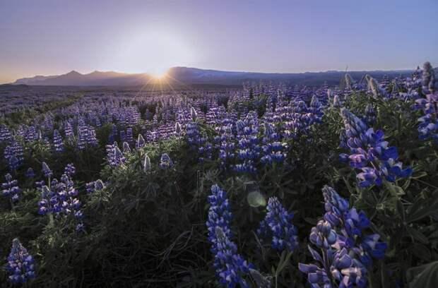 28 снимков изИсландии отвлюбленного внее фотографа