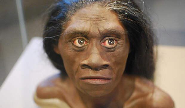 Раса лилипутов, которая поставила ученых в тупик