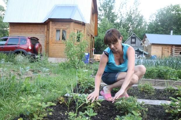 Каждый четвертый нижегородец проведет летний отпуск дома или на даче