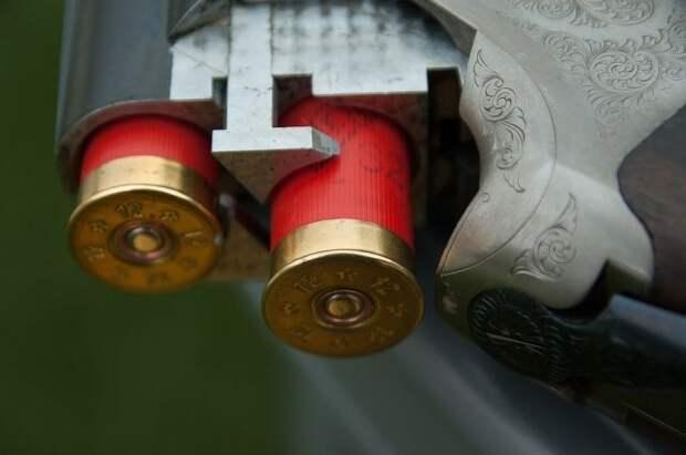 Госдума повышает до 21 года возраст приобретения огнестрельного оружия