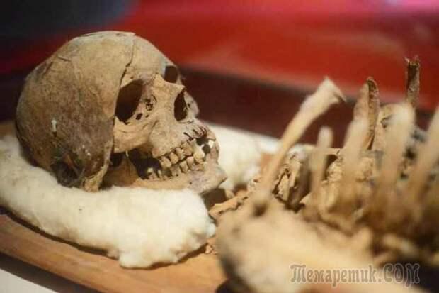 Археологические находки, которые могут пролить свет на наше прошлое