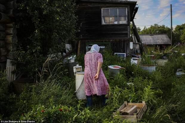 Зоя Тимофеевна и ее муж —последние жители деревни Асорино бомжи и пьяницы, российская глубинка