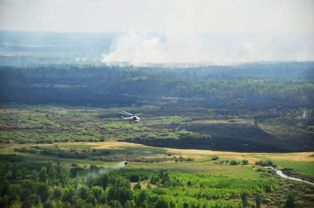 Восемь природных пожаров возникли в Тюменской области за сутки