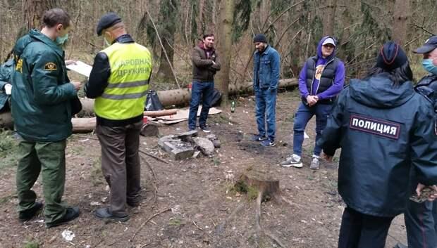 В Подольске оштрафовали нарушителей самоизоляции, устроивших пикник в лесу