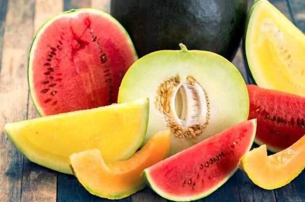 Сладкие арбузы и сочные дыни. Как получить убойный урожай бахчевых?