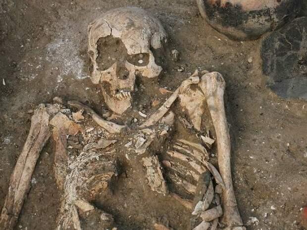 В петербургском парке нашли мешок с костями