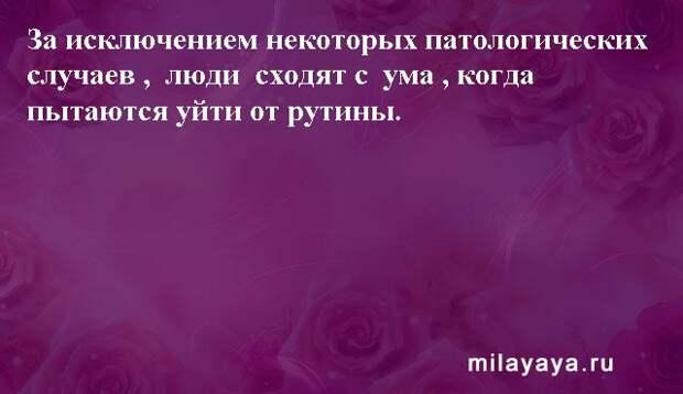 Картинки со статусами. Подборка milayaya-status-milayaya-status-30231112102020-5 картинка milayaya-status-30231112102020-5