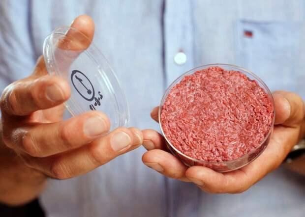 Искусственное мясо перевернет наш мир