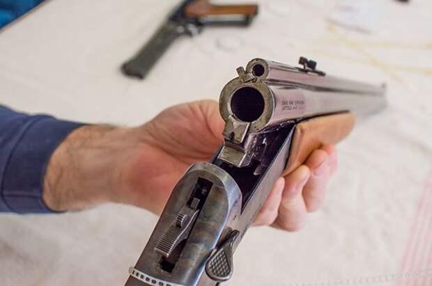 Комиссия кабмина одобрила проект по ужесточению требований к выдаче оружия