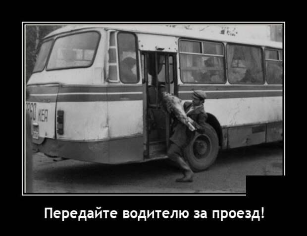 Демотиватор про проезд