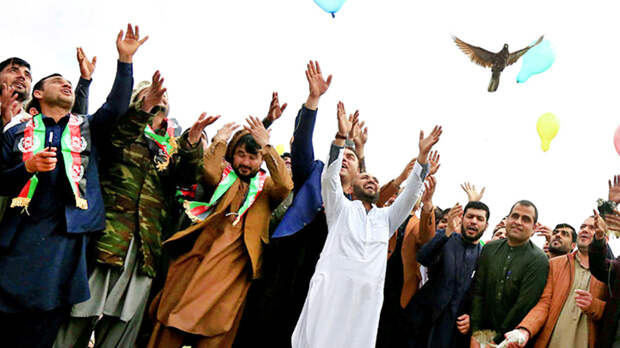 Дарья Митина: Уроки Афганистана для России – своих не бросаем