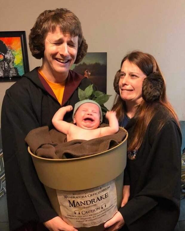 Семейный костюм с корнем Мандрагоры:)