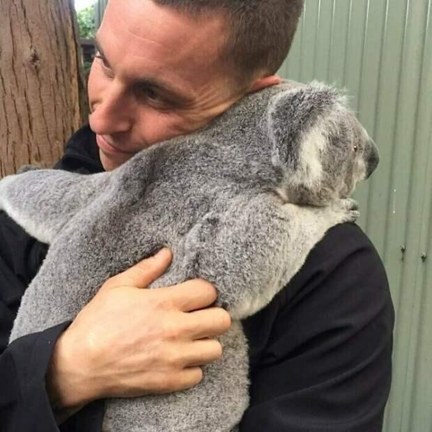 Как выглядит работа мечты: сотрудник заповедника вАвстралии рассказывает освих трудовых буднях