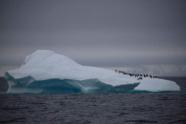 Айсберг размером с Петербург откололся от Антарктиды