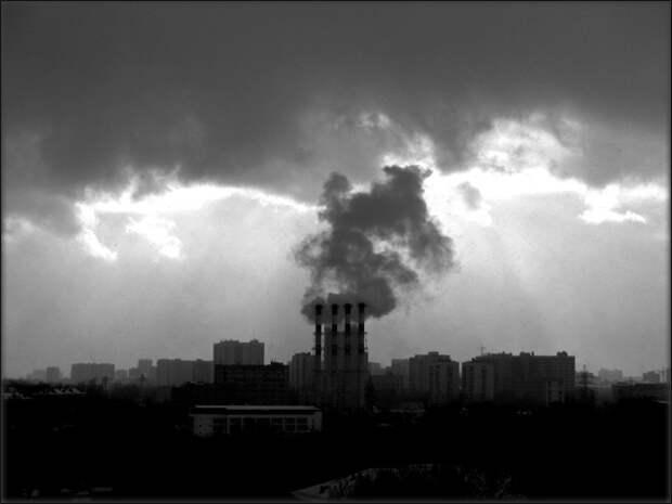 Самые загрязненные города России и что им поможет избавиться от мусора