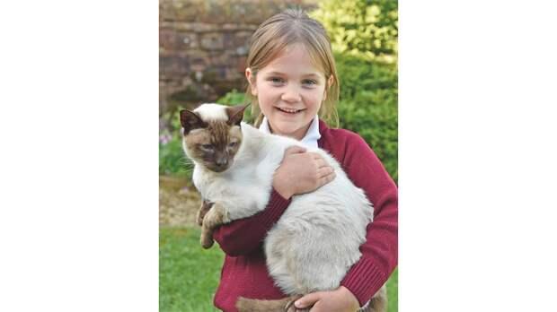 Кот воссоединился с семьей спустя шесть лет после пропажи