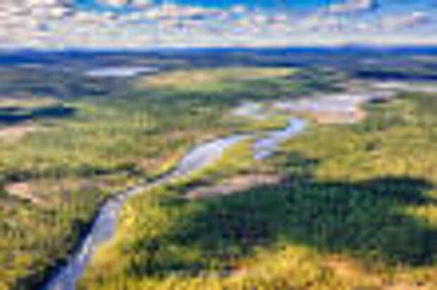37 резидентом Арктической зоны РФ от Мурманской области стала туристическая компания