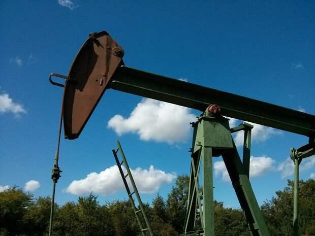 Победа Байдена на президентских выборах в США может привести к резкому падению цен на нефть
