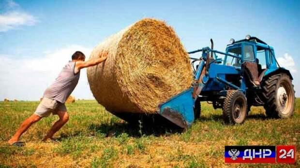 Украинские фермеры в ужасе от закона, который собирается подписать Зеленский