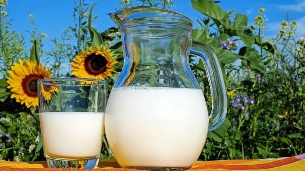 Микробиолог Соколова рассказала о вредных свойствах молока в жаркую погоду
