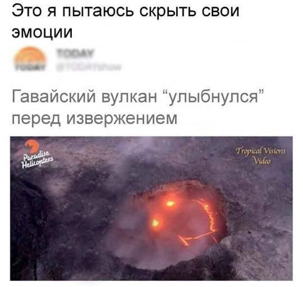 vHMN_CmPahM