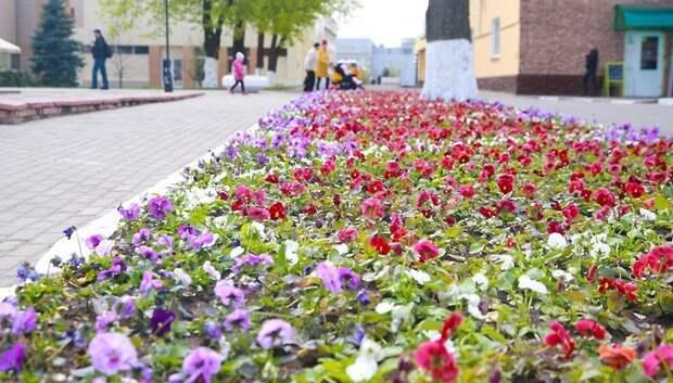 Новую технику для полива растений запустят в Подольске в 2019 году