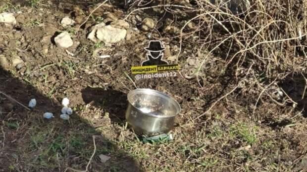 Барнаульцы пожаловались на пенсионерку, которая бомбардирует тротуар посудой