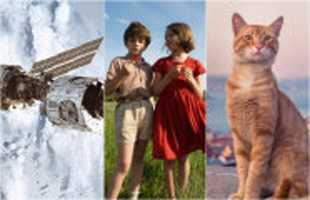 Art: 5 лучших, документальных фильмов, которые заинтересуют даже детей