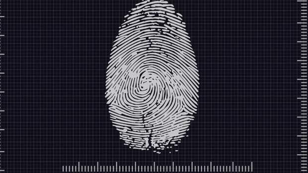 Минфин заявил о необходимости обезопасить биометрические данные россиян