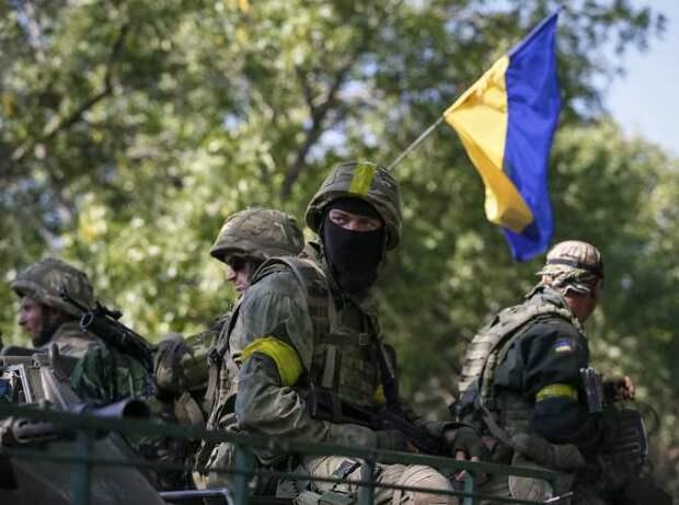 Чудовищно: как на Донбассе встретили Зеленского и послов Запада огнём и флагом Третьего рейха: сводка ЛНР (ФОТО)
